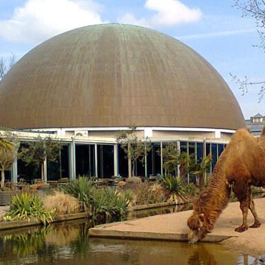 Artis Planetarium