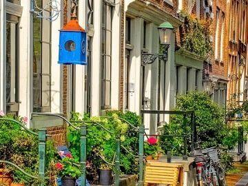 Buurten van Amsterdam