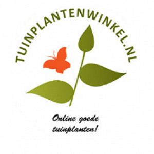 Online tuinplanten winkel