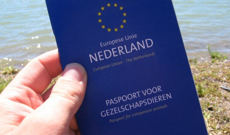 Bring Your Pet Passport When Traveling in Amsterdam